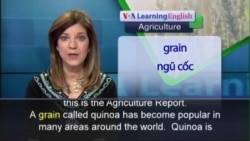 Anh ngữ đặc biệt: Quinoa Popularity (VOA-Ag Rep)