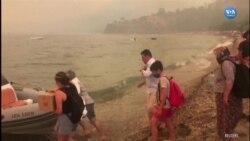 Bodrum'da İnsanlar Teknelerle Tahliye Ediliyor