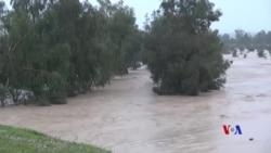 Barîna Baranên Boş Metirsîya Lehîyan li Germîyanê Zêde Dike