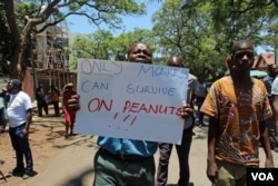 Webster Tabvemhiri is one of the demonstrators when government workers took to the streets in Harare, Zimbabwe, Nov. 6, 2019. (Columbus S. Mavhunga/VOA)