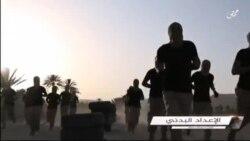 Как победить ИГИЛ?
