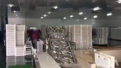 Cólera em Luanda provoca alerta no mercado de peixe de Benguela
