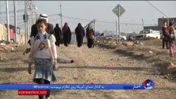 داعش شکست خورده اما موج مهاجرات از شهرهای عراق به سمت اردوگاهها افزایش یافته است