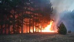 Останаа без шумите, без чистиот воздух, а сега стравуваат дека ќе останат и без изгорените дрвја