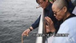 """刘晓波生前好友发文称刘霞说""""走不了就死家里"""""""