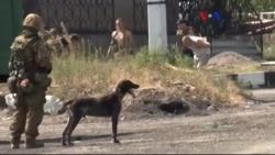 'Ukrayna Ordusu Hala Zaferden Uzak'