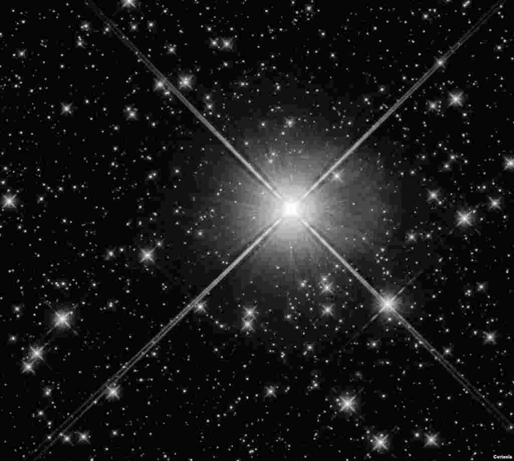 Este cúmulo abierto consta de aproximadamente 40 estrellas, la más brillante de las cuales (cerca del centro) es la estrella variable. S Normae. [Foto: Cortesía NASA].