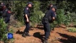Operacion i ri anti-drogë në Dukagjin