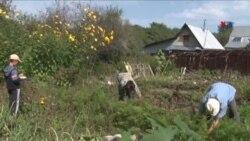 Ruslar yenidən öz bostanlarında tərəvəz yetişdirməyə başlayıb