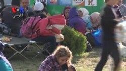 با ادامه سیل مهاجران به اروپا کرواسی مرزهای خود را به روی آنها بست