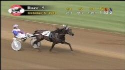 Red Mile: Gelanggang Pacuan Kereta Kuda di Lexington, Kentucky