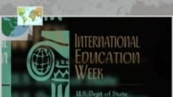 Policy Brief: International Education Week