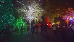 Огни зоопарка Вашингтона