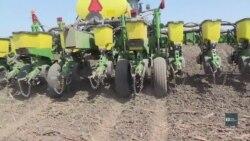 Торговельна війна у часи глобалізації: як від тарифів на Китай постраждають американські фермери. Відео