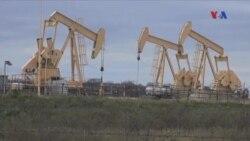Aşağı yanacaq qiymətinin Texaslı neft istehsalçılarına təsiri