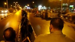 Horse Cart Races Delight Egyptians
