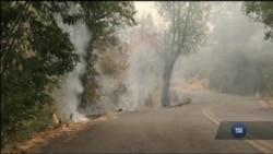 Пожежі в Каліфорнії: У долині Сонома оголошено нову хвилю обов'язкової евакуації. Відео