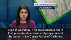 California's Dry Weather Could Lead to Higher Food Prices