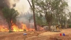 野火造成5人喪生 川普總統宣佈加州進入緊急狀態