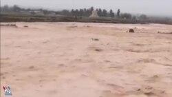 سیل در شیراز به نزدیکی محوطه تاریخی پاسارگاد و مقبره کوروش رسید