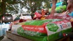 Як у Каролінах рятували домашніх тварин від урагану. Відео