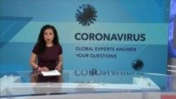 美国之音特别节目:新冠状病毒疫情全球专家问答 (2020年4月5日)