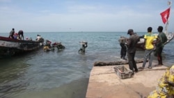 No Good Fish in the Sea: Overfishing in Senegal