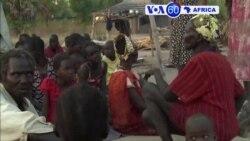 Manchetes Africanas 4 Janeiro 2015