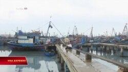 Trung Quốc ra lệnh cấm đánh bắt cá ở Biển Đông