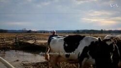 OFF THE HIGHWAY: American Farmers โฉมหน้าที่เปลี่ยนไปของเกษตรกรอเมริกัน?