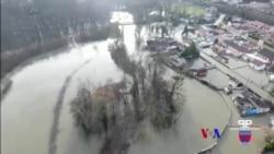 2018-1-29 美國之音視頻新聞: 巴黎塞納河水位高漲,清理工作需數週