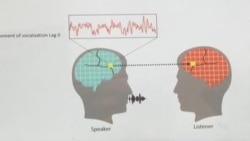Scientists Explore How Brains Work During Conversations