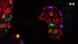 Джек-тыквенная голова: фестиваль светящихся тыкв под Вашингтоном