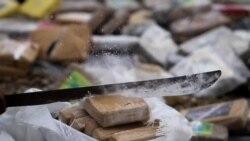 Departamento de Estado señala naciones con lucha ineficiente en narcotráfico