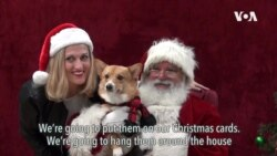 Santa Pictures with Doggies