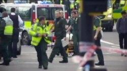 Terör Olayları Bu Yıl Zirve Yaptı