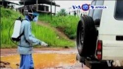 Manchetes Africanas 13 Julho 2015