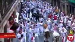 Khai mạc lễ hội chạy đua với bò tót ở Tây Ban Nha