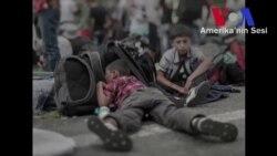 Suriyeli Mülteci Çocukların Dramı