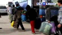 Manchetes Africanas 19 de Fevereiro 2015