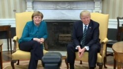 Trump, Merkel Meet in Oval Office