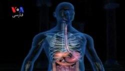افزایش ۲۵ درصدی مرگ بیماران کبدی در جهان