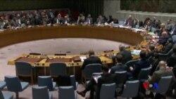 俄羅斯再次否決安理會延長敘利亞化武調查決議