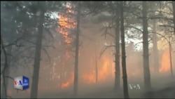 Zjarret në veri të Shqipërisë
