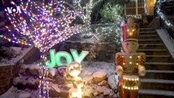 Злобный Гринч 2020 года: COVID украл праздники