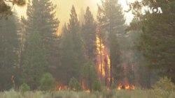 太浩湖附近的滅火行動出現進展