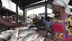 Economie en berne Ituri (vidéo)