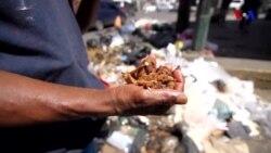 Venesuelalılar ailələrini dolandırmaq üçün zibilliklərə üz tuturlar