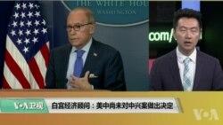 白宫要义(黄耀毅):白宫经济顾问:美中尚未对中兴案做出决定