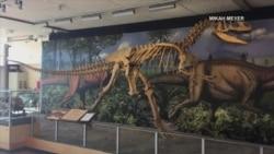 美国万花筒:国家公园之旅-恐龙国家公园